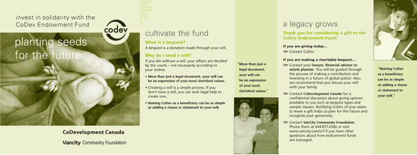 Ngo development education archives working design for Ngo brochure templates